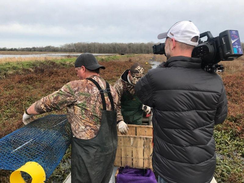Louisana Crawfish Harvest - This Week In Agribusiness
